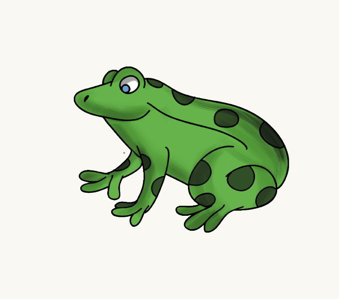 How to Draw Frog: Step 7