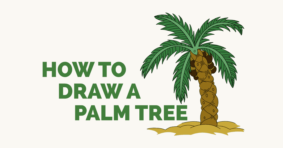 How to Draw a Palm Tree- featured image