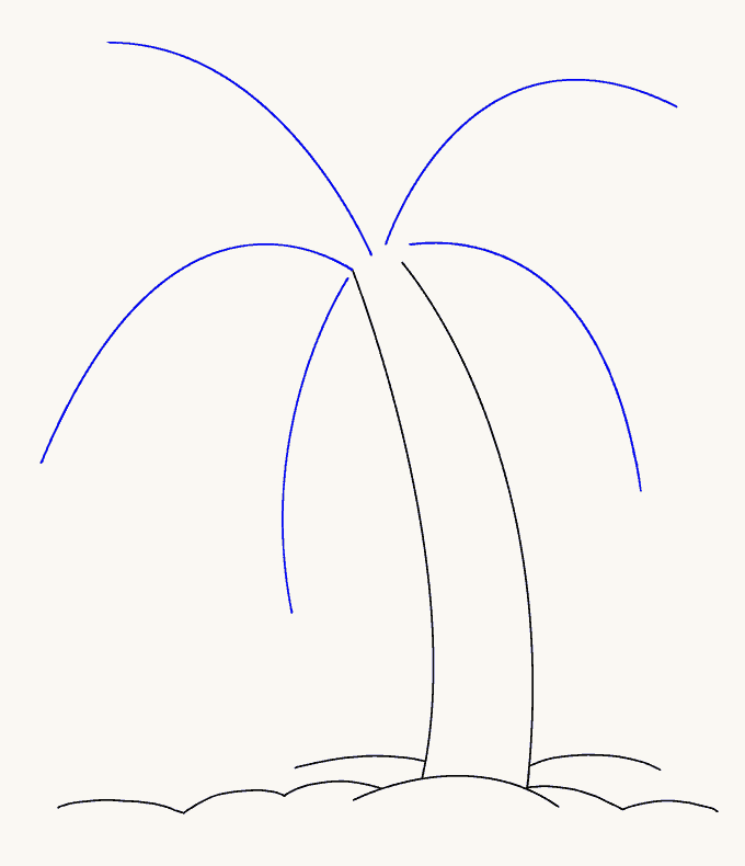 How to Draw Palm Tree: Step 6