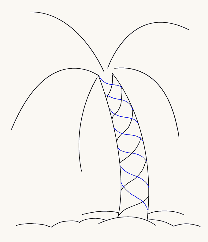 How to Draw Palm Tree: Step 8