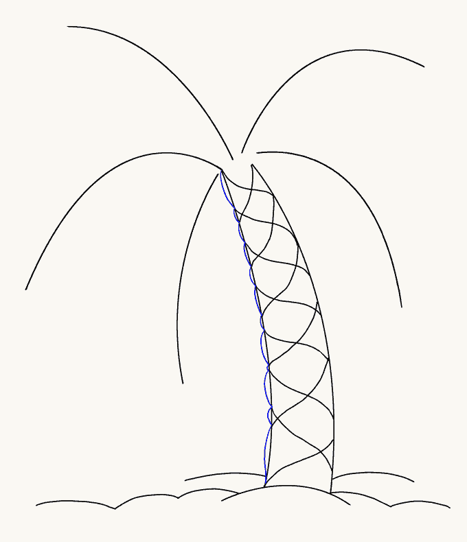 How to Draw Palm Tree: Step 9