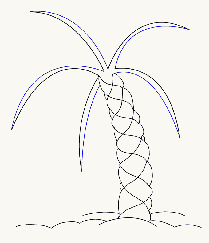 How to Draw Palm Tree: Step 12
