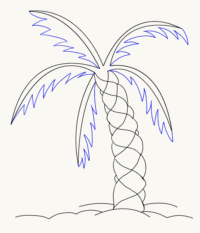 How to Draw Palm Tree: Step 13
