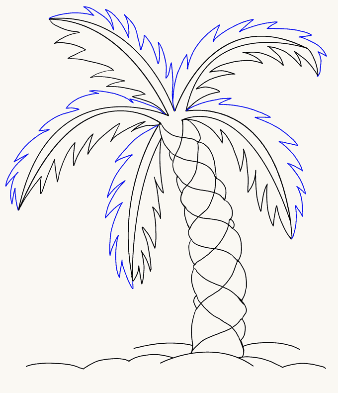 How to Draw Palm Tree: Step 14