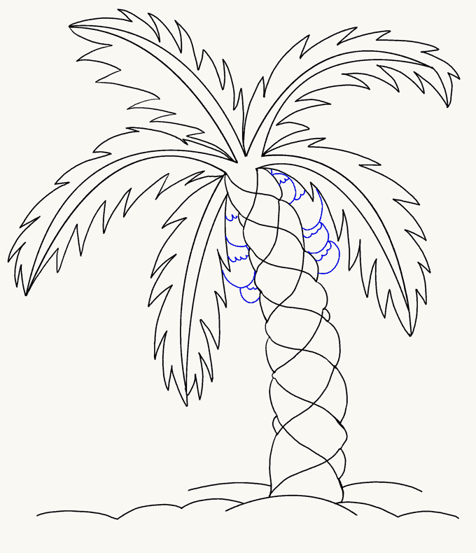 How to Draw Palm Tree: Step 15