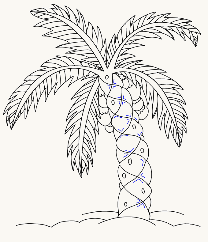 How to Draw Palm Tree: Step 19