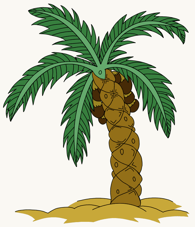 How to Draw Palm Tree: Step 20