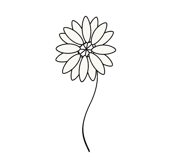 Daisy Flower Line Drawing : How to draw a daisy easy drawing guides