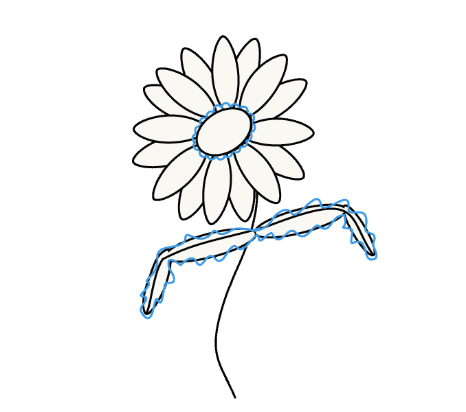 How to Draw Daisy Flower: Step 8