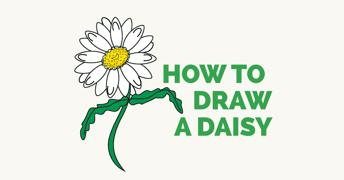 How to Draw A Daisy - featured image