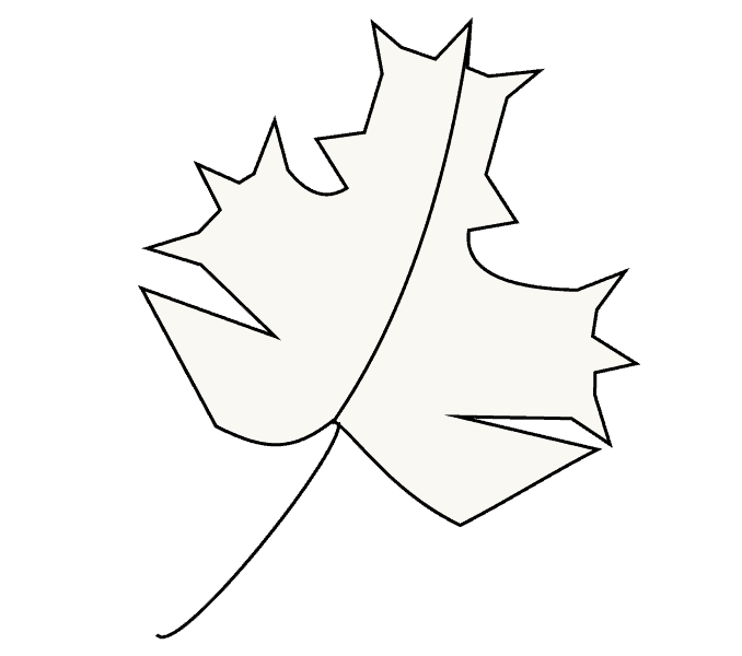 How to Draw Maple Leaf: Step 6