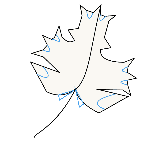 How to Draw Maple Leaf: Step 7
