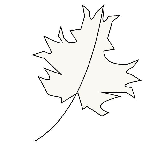 How to Draw Maple Leaf: Step 8
