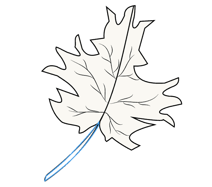 how to draw a tronto mapl leaf