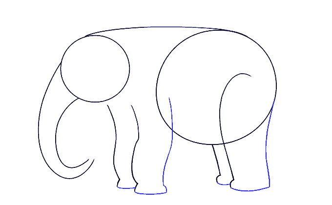 How to Draw Elephant: Step 6