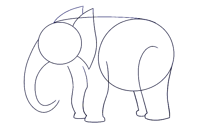 How to Draw Elephant: Step 8