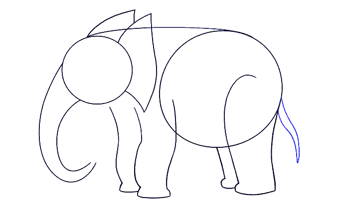 How to Draw Elephant: Step 9