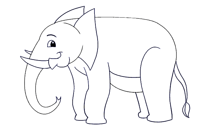 How to Draw Elephant: Step 15