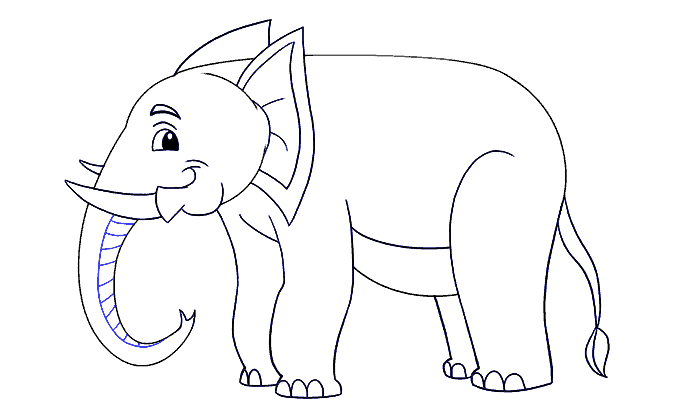 How to Draw Elephant: Step 19