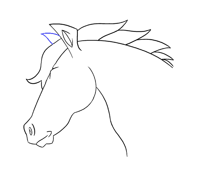 How to draw a horse head Step: 17