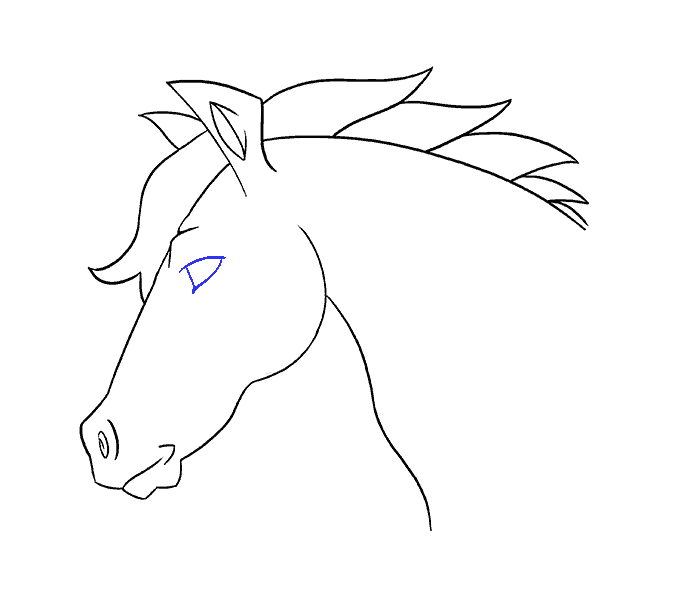 How to draw a horse head Step: 18