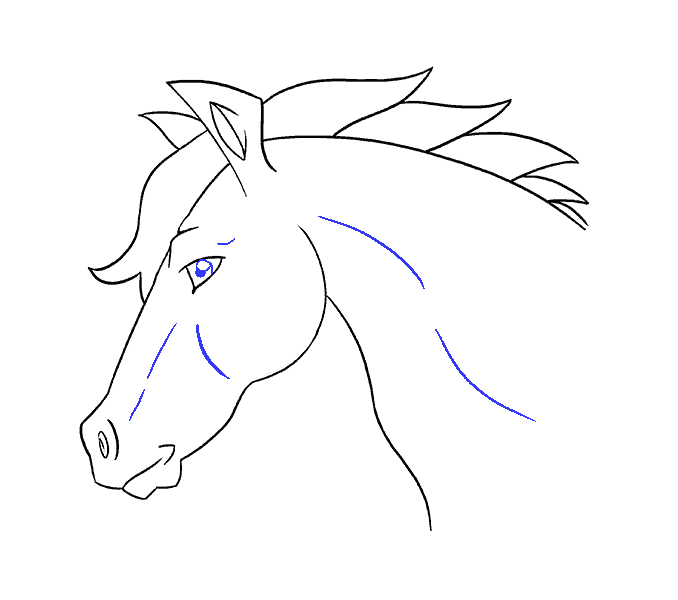How to draw a horse head Step: 19