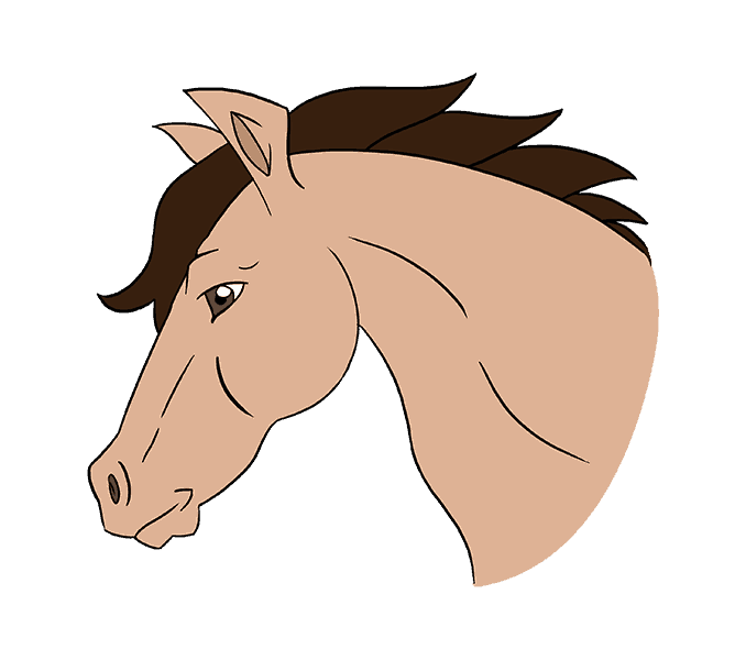 How to draw a horse head Step: 20