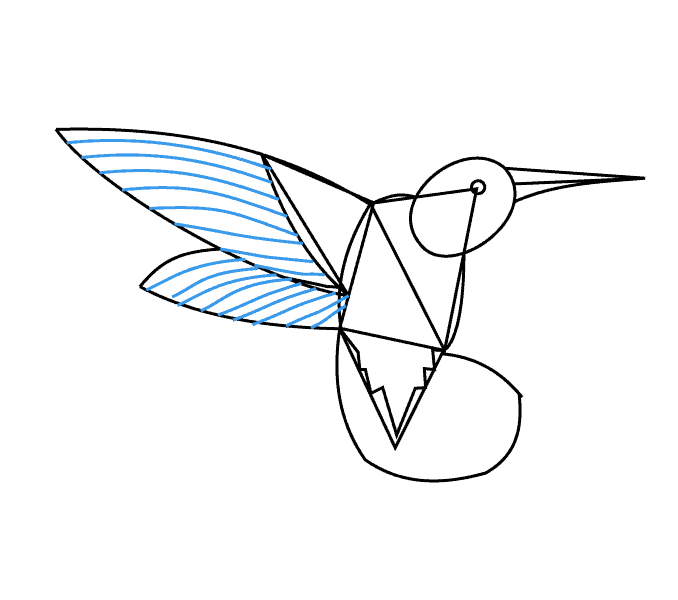 How to Draw Hummingbird: Step 11
