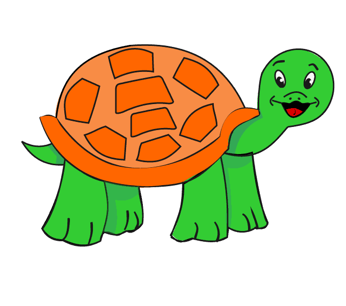 How to draw a turtle: Step 16