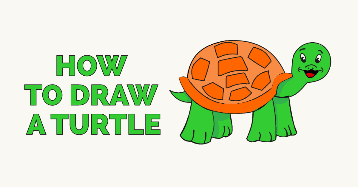 how to draw a turtle: featured image