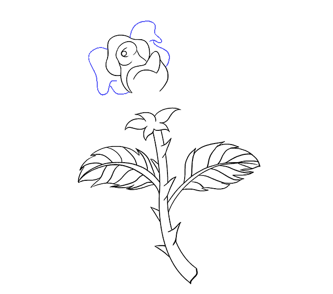 How to Draw Rose with a Stem: Step 16