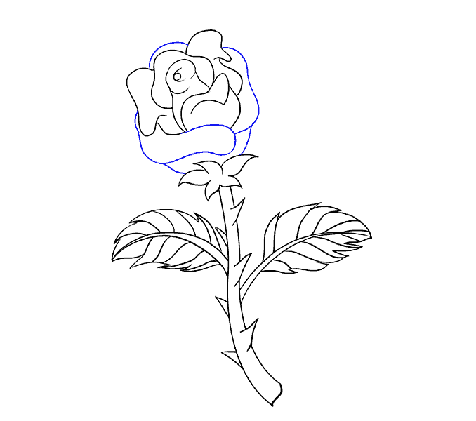 How to Draw Rose with a Stem: Step 17