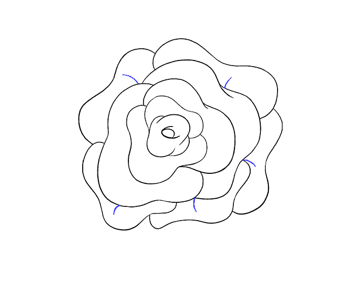 How to draw a simple rose Step: 13