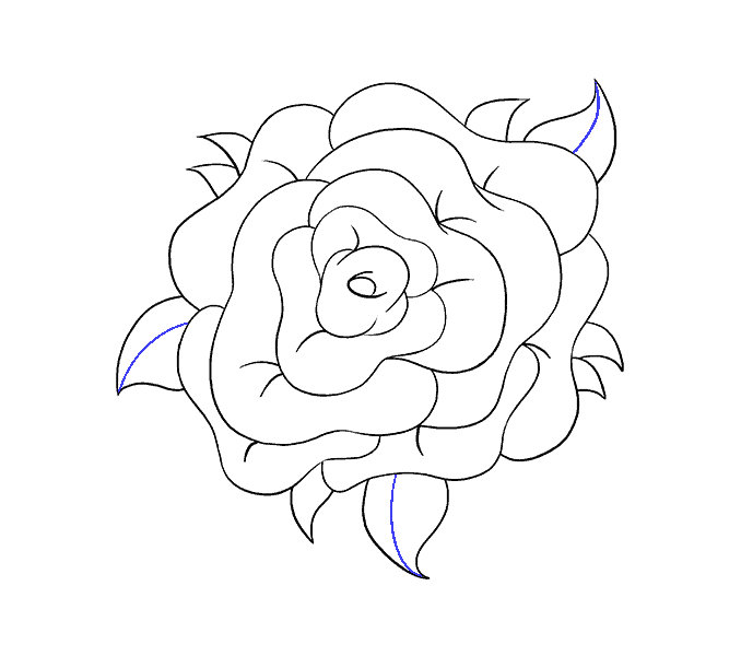 How to Draw Rose Flower: Step 18