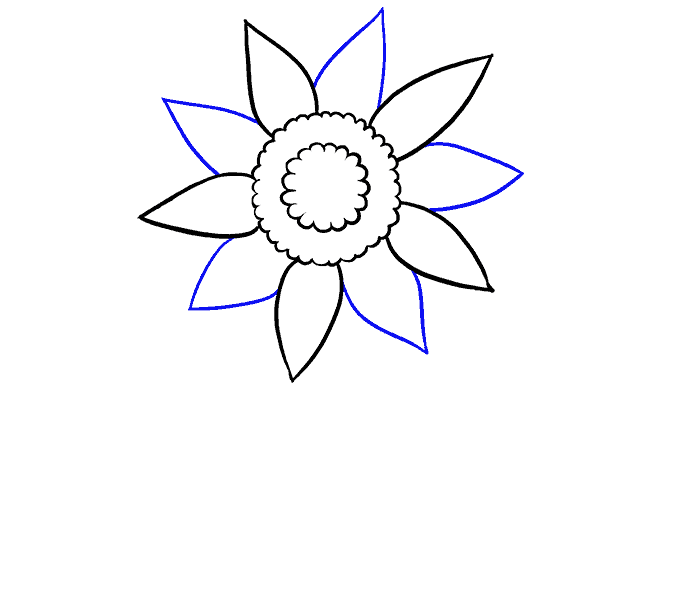How to Draw Sunflower: Step 4