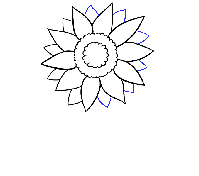 How to Draw Sunflower: Step 6