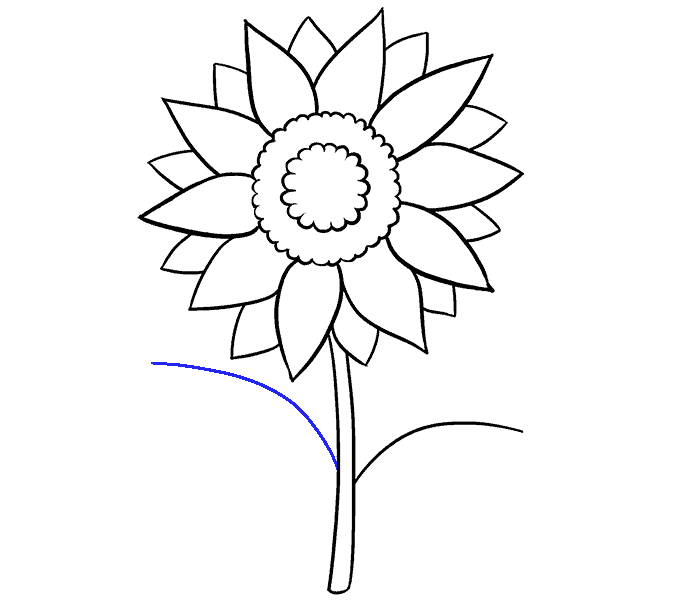 How to Draw Sunflower: Step 9