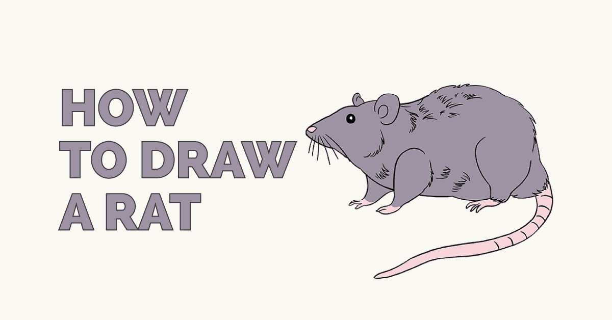 How to Draw a Rat | Step-by-Step Tutorial | Easy Drawing ...