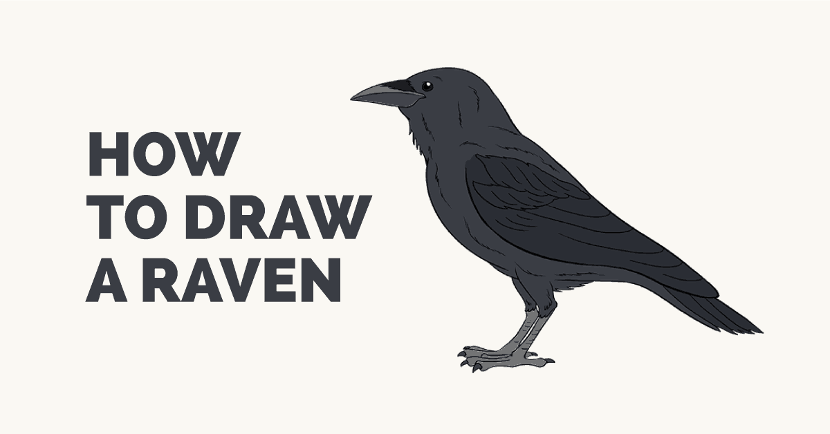 How to Draw a Raven: Featured Image