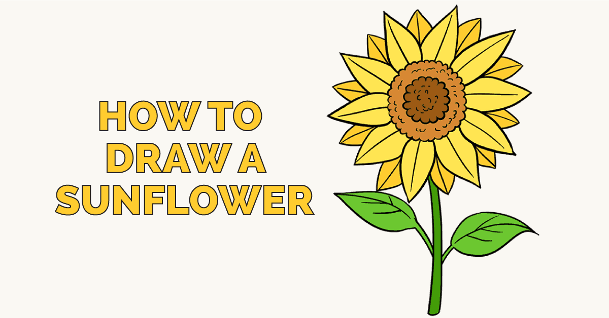 How to Draw a Sunflower | Easy Step by Step Drawing Guides