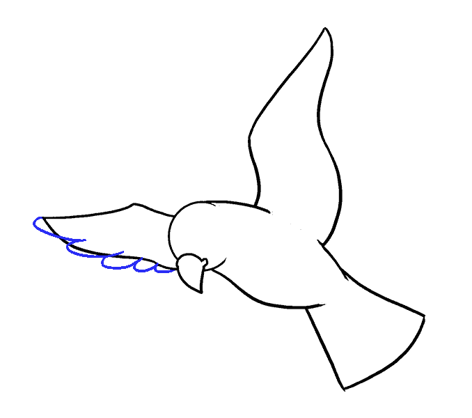 How to Draw Bird: Step 9