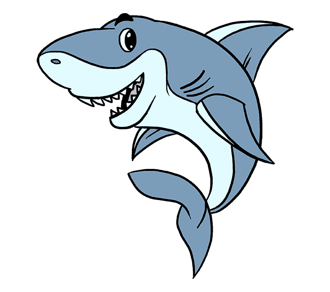 How to Draw Shark: Step 20