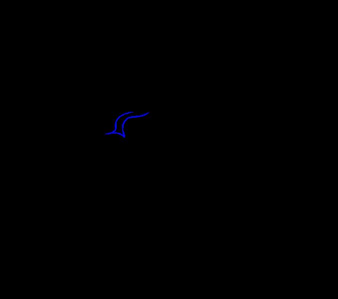 Cómo dibujar una serpiente de dibujos animados: Paso 14