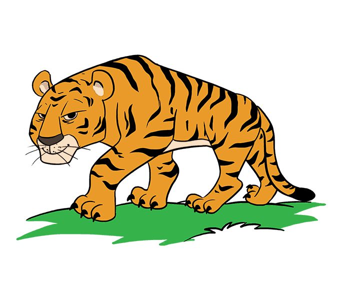 How to Draw Cartoon Tiger: Step 20