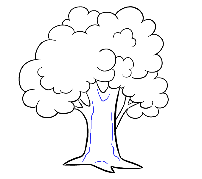 How to Draw Cartoon Tree: Step 15