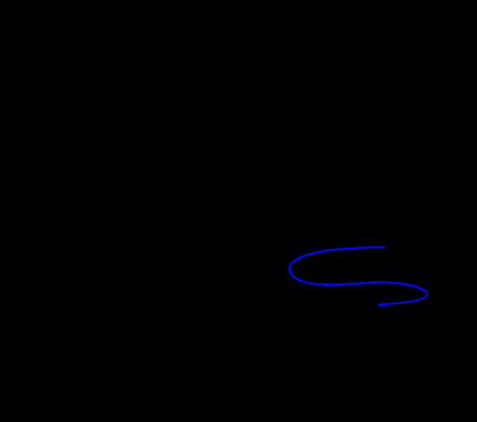 How to Draw Cobra: Step 14