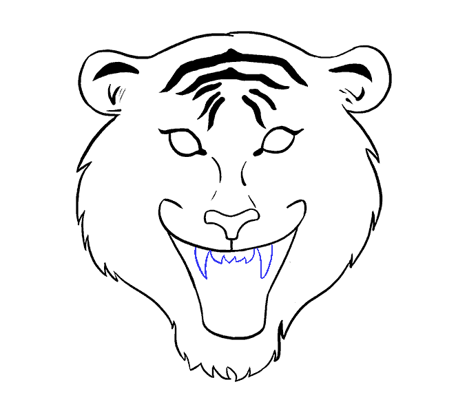 How to Draw Tiger Face: Step 11