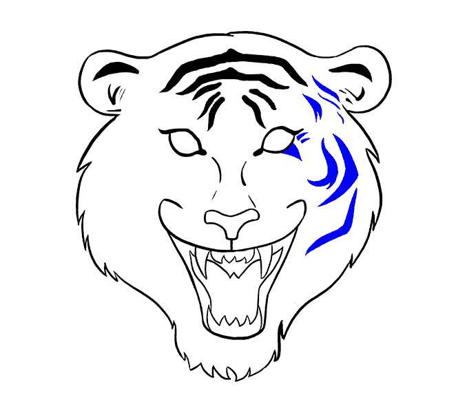 How to Draw Tiger Face: Step 14
