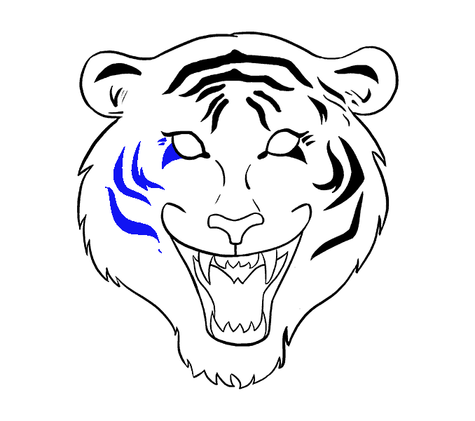 How to Draw Tiger Face: Step 15