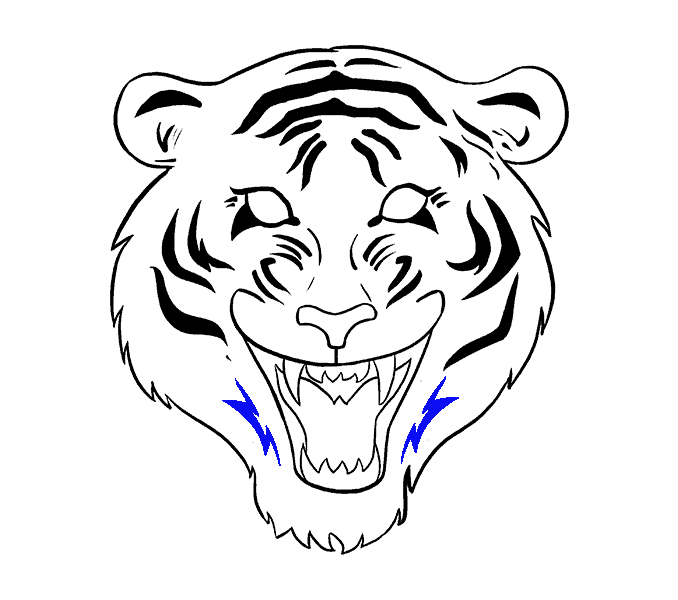 How to Draw Tiger Face: Step 17